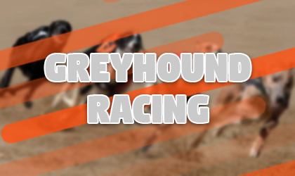 Tom greyhound online betting all aged stakes betting on sports